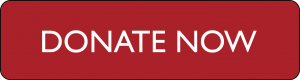 donate_button_1